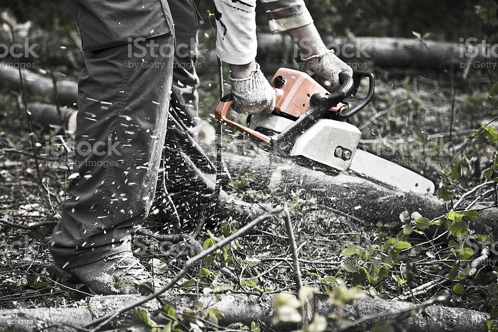 A person cutting up trees with a chainsaw royalty-free stock photo