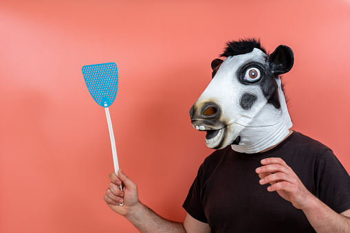 person disguised as a cow mask with a blue fly swatting shovel