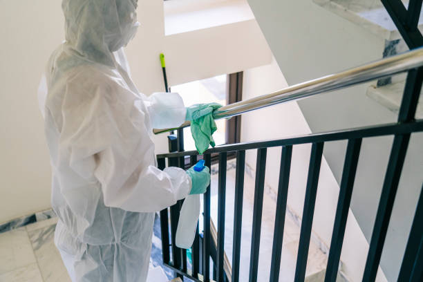 A person disinfects a portal before a virus pandemic A person wearing a mask, gloves and a safety suit cleans and disinfects a doorway of a community flat in the face of a virus pandemic, protected safety equipment so as not to be infected decontamination stock pictures, royalty-free photos & images