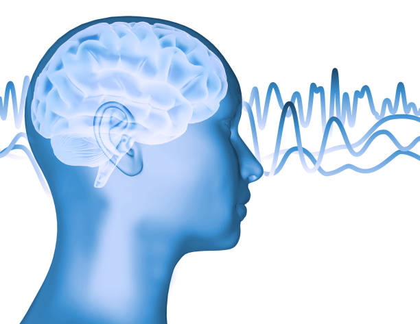 Person face profile and brain waves 3D rendering. stock photo