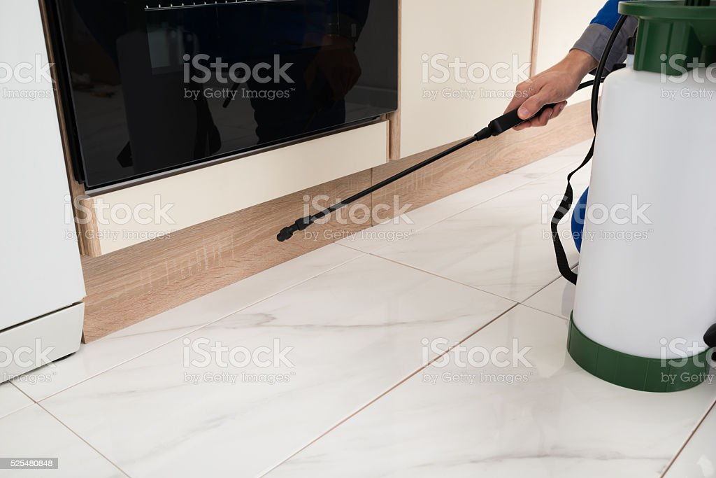 Person Hands Spraying Insecticide stock photo
