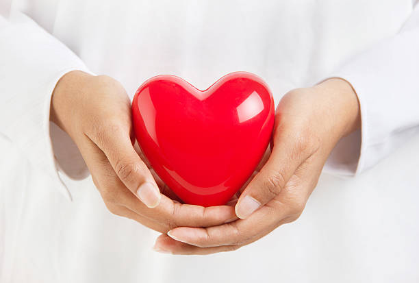 Person holding a heart shaped object stock photo