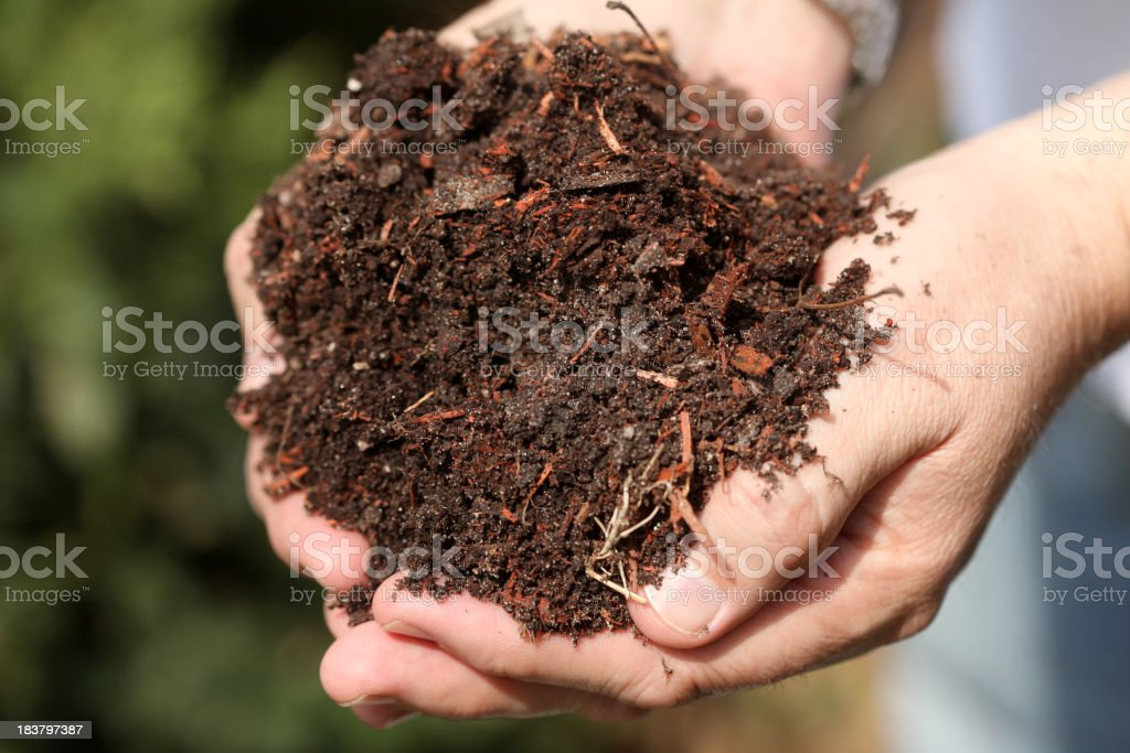 Person holding out a handful of soil royalty-free stock photo