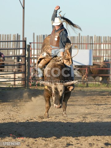 A cowboy riding a bull at a local rodeo.  [url=http://www.istockphoto.com/file_search.php?action=file&filetypeID=&username=4loops&form_cs_nw=xxx&form_cs_n=xxx&form_cs_ne=xxx&form_cs_w=xxx&form_cs_center=xxx&form_cs_e=xxx&form_cs_sw=xxx&form_cs_s=xxx&form_cs_se=xxx&color=&within=1&text=rodeo ][img]http://jerrymayo.smugmug.com/photos/129043572-S.jpg[/img]More Rodeo Action[/url]