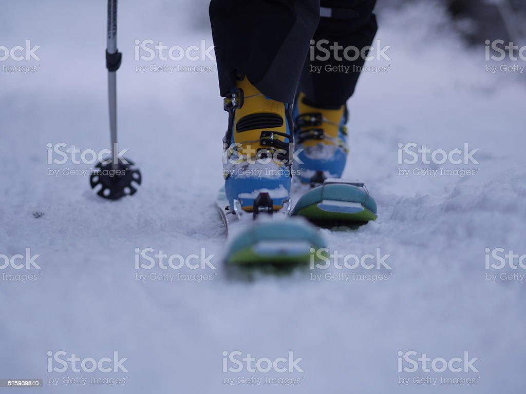 Person in skis walking in snowy forest stock photo