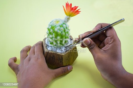 istock A person pulling a white stone with a tweezers from a miniature fresh green tree pot 1208325497