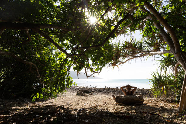 A Person Relaxing in the Shade of a Tree on a Tropical Beach stock photo