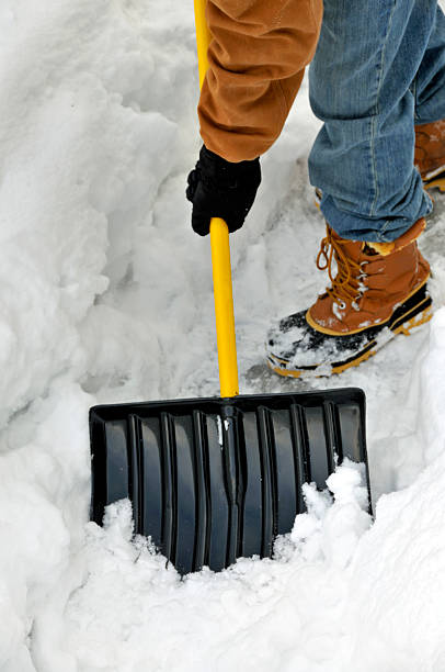 A person shoveling a path in winter stock photo