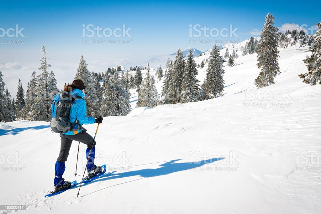 Person snowshoeing up a snowy mountain forest royalty-free stock photo