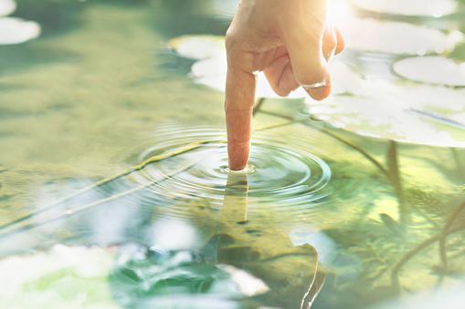 Person Touches The Water With His Hand Stockfoto und mehr Bilder von Abmachung