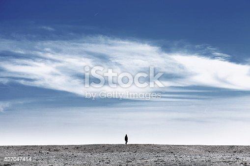 A Person walk alone in a desert landscape