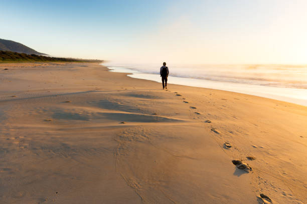 Person Walking Along a Misty Beach at Sunrise stock photo