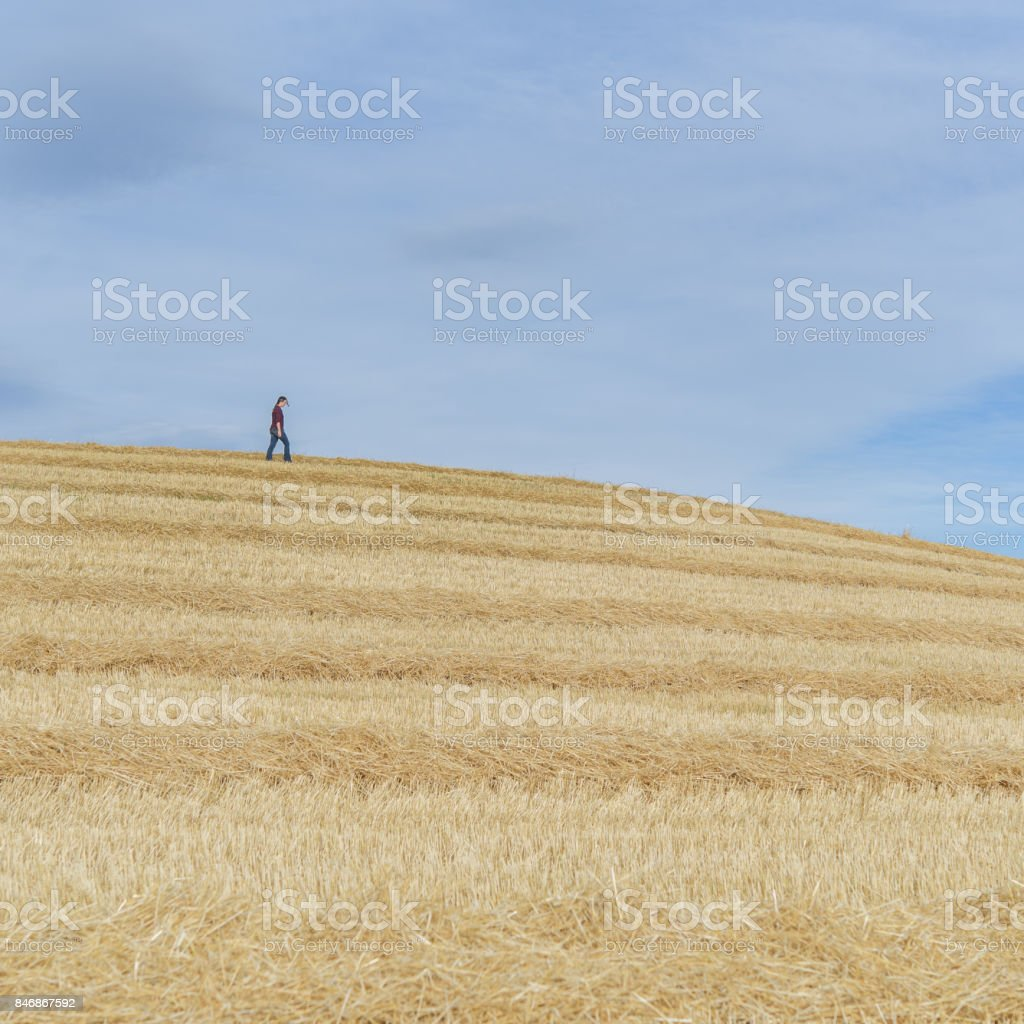 Person walking on top of an agriculture field hill stock photo