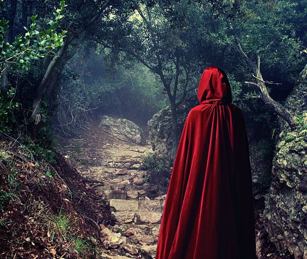 Person wearing red cloak in a forest. stock photo