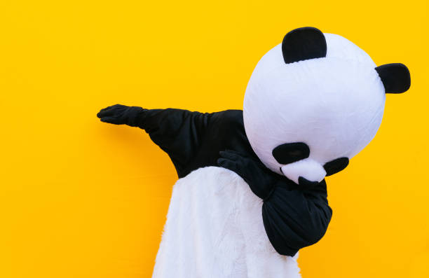 personne avec la danse de danse de danse de danse de danse de danse de danse de danse de danse concept de mode de vie de caractère de mascotte sur le fond coloré - panda photos et images de collection