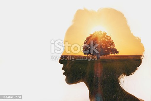 istock Personal development and business idea career concept. 1003610770
