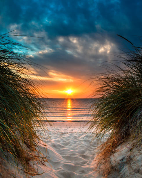 personal paradise on a beautiful white sand beach at sunset - lake michigan stock pictures, royalty-free photos & images