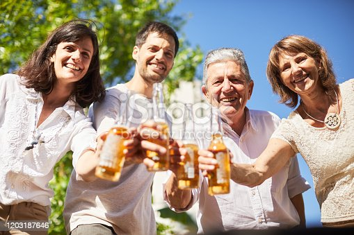 1196170672istockphoto Personal point of view of a family toasting and looking at camera. 1203187646