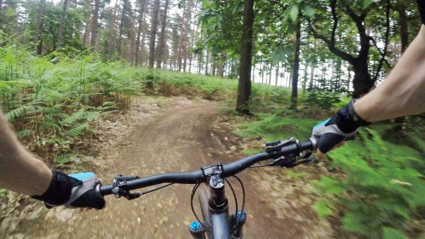 Personal view of mountain biker going through a forest stock photo
