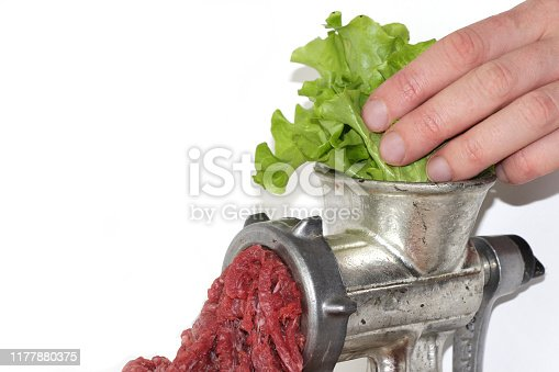 Plant-based meat concept. Green leaves of lettuce salad are inserted into the meat grinder from above by person's hand, red ground beef comes out of the meat grinder. Copy space for your text.