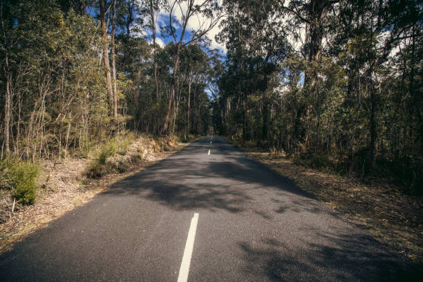 Perspective Road, Megalong Valley stock photo