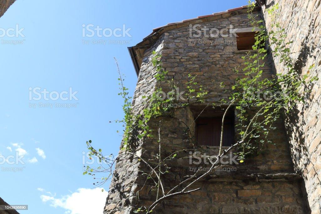 Una vista en perspectiva de una fachada de piedra con un verde hiedra junto a un par de ventanas de madera en Ainsa, un pequeño pueblo rural en las montañas del Pirineo Aragonés Español de escalada - foto de stock