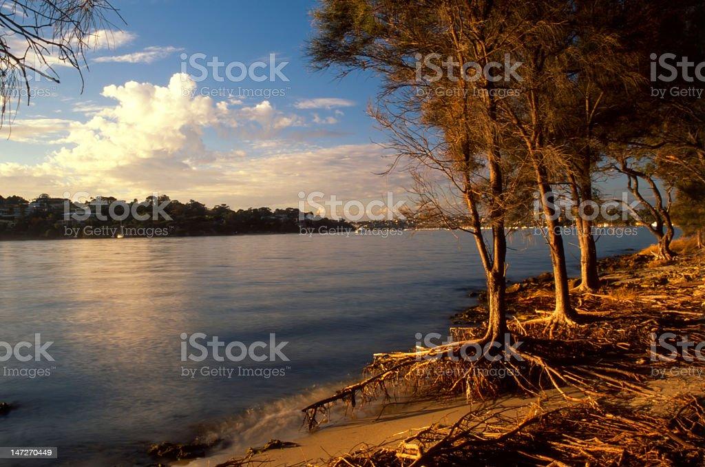 Perth Swan-river Bank stock photo