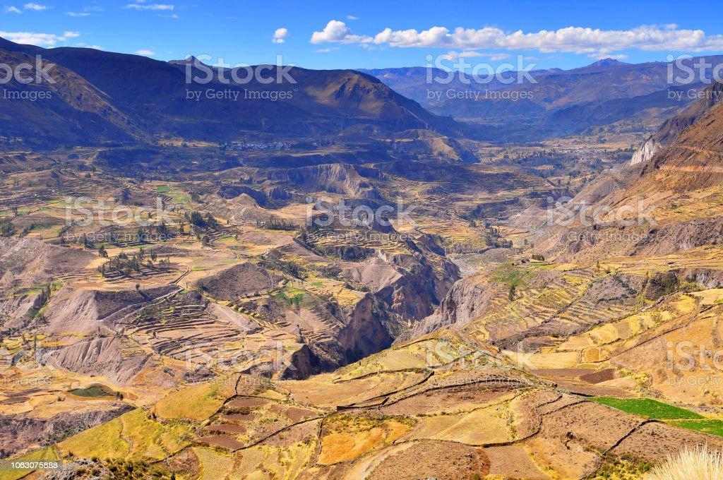 Peru Valle Del Colca Cultivo De Terraza Foto De Stock Y Más