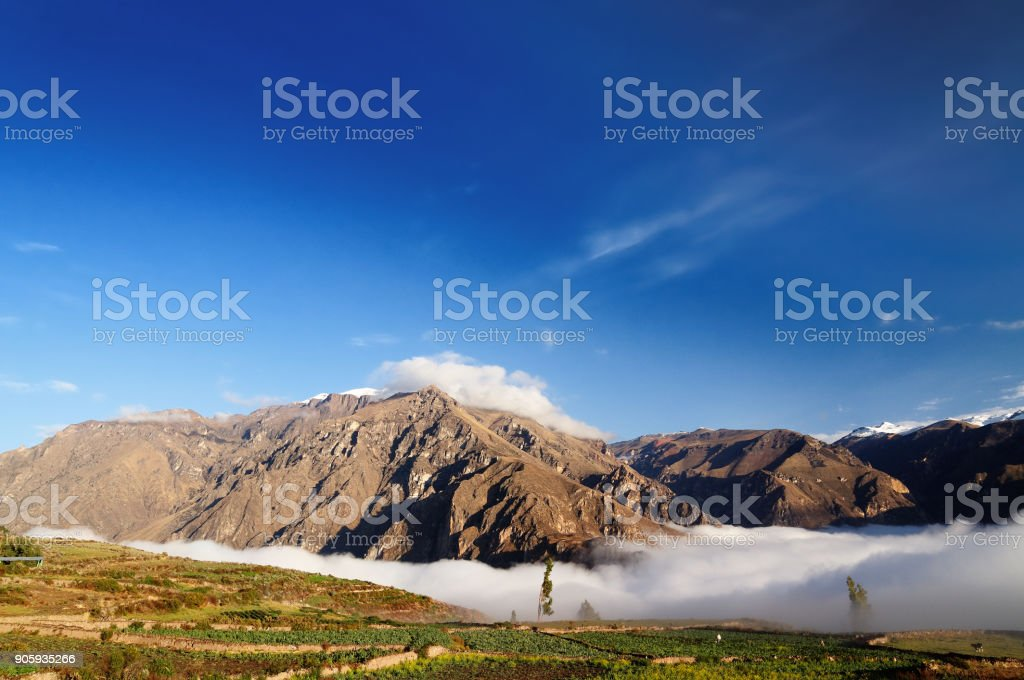 Peru, fog in the Colca canyo stock photo