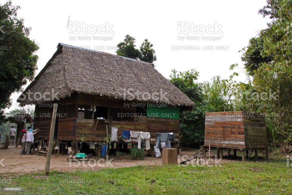 Peru Hut In The Amazon Stock Photo More Pictures Of Horizontal