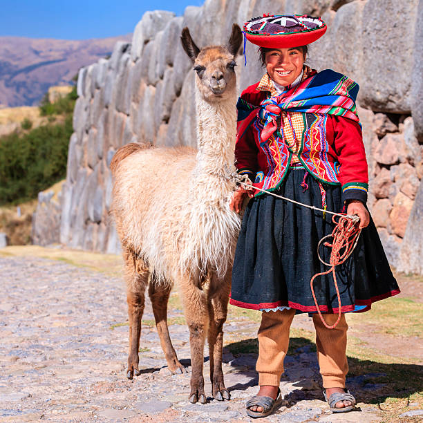 peruvian girl wearing national clothing posing with llama near cuzco - peruvian ethnicity stock pictures, royalty-free photos & images