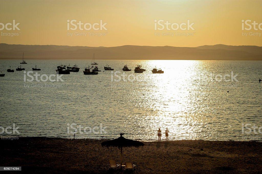 Peruvian shore of Paracas stock photo