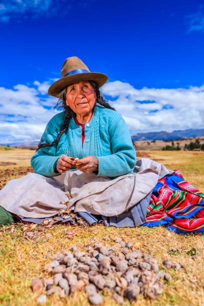Peruvian woman preparing chuno - frozen potato, near Cuzco,Peru stock photo