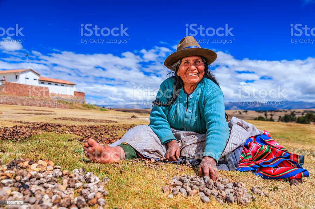 Peruvian woman preparing chuno - frozen potato, near Cuzco,Peru stock photo