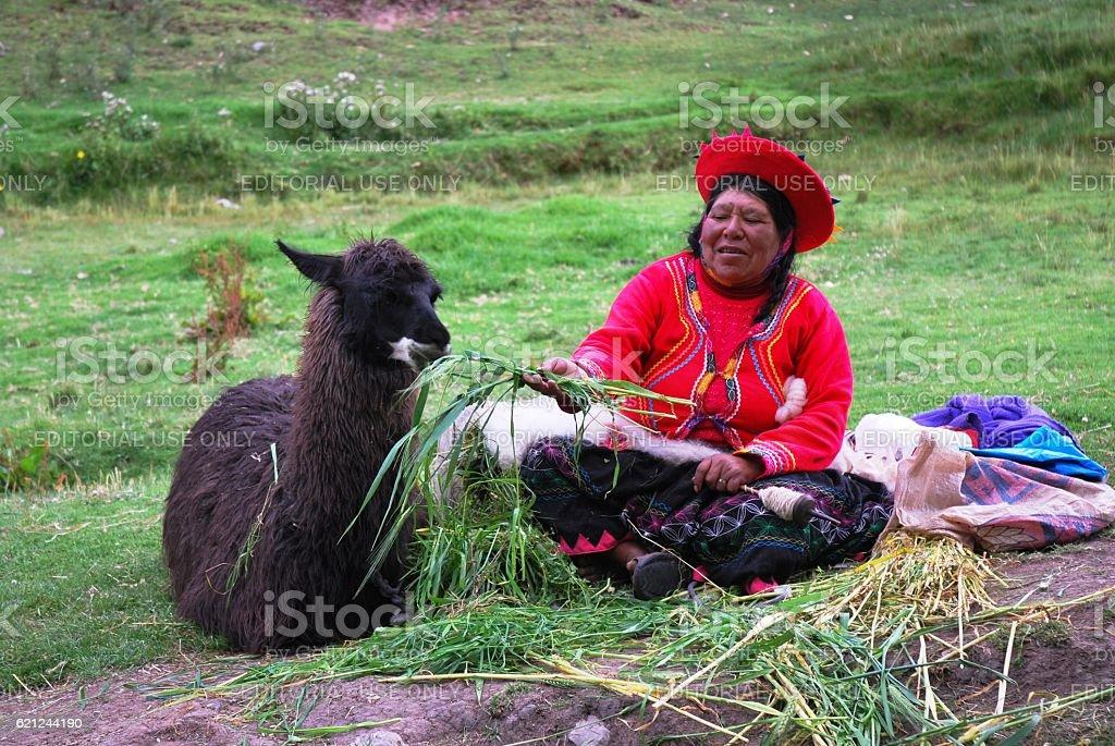 Peruvian Woman with Llama stock photo