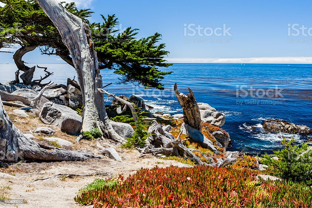 Pescadero Point at 17 Mile Drive in Big Sur California stock photo