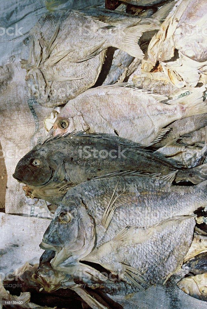 pesci secchi stock photo
