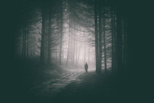 Persona caminando en el sendero del bosque oscuro y misterioso - foto de stock