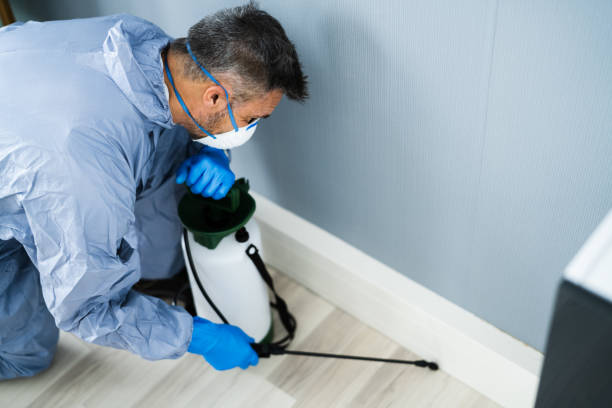 Pest Control Exterminator Man Spraying Pesticide stock photo