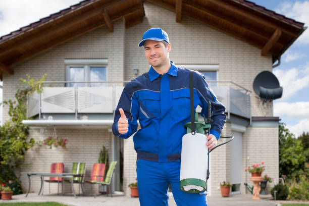 Pest Control Exterminator Man Worker stock photo
