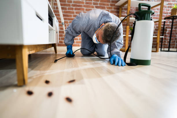 Pest Control Exterminator Services Spraying Insecticide stock photo