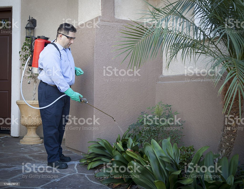 Image result for pest control istock