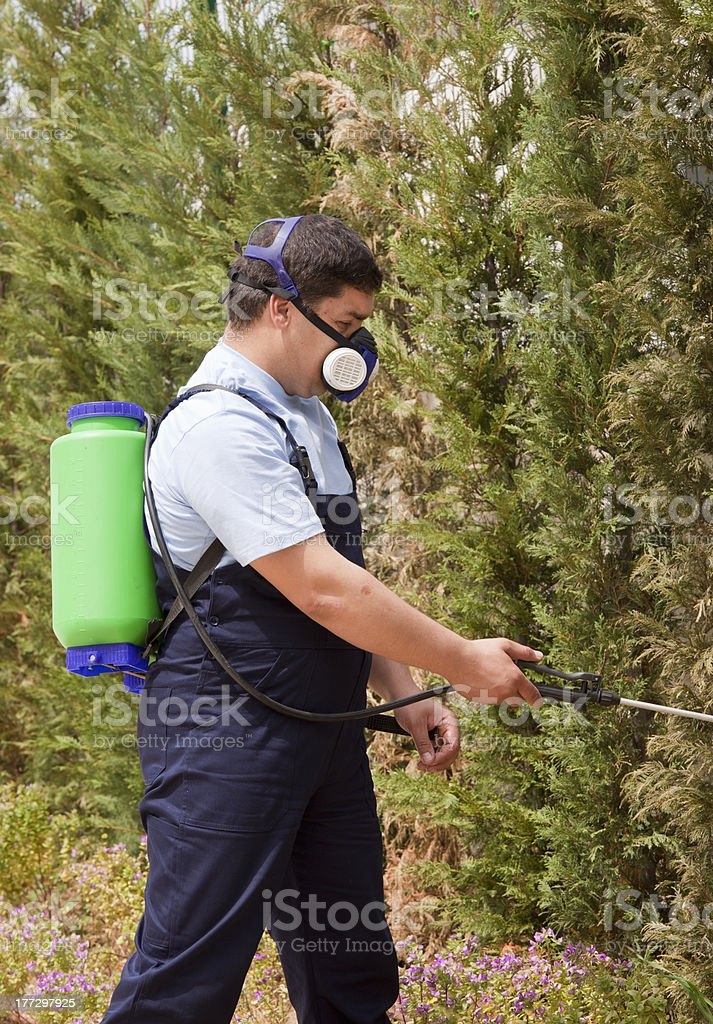 pest control royalty-free stock photo