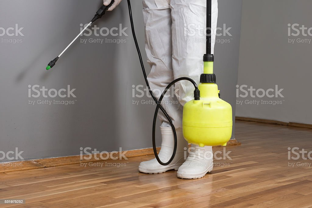 Pest Control Professional stock photo
