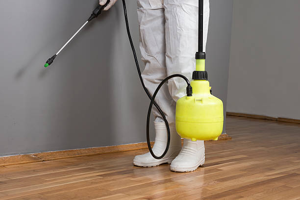 Pest Control Professional Professional exterminator working for pest control. crop sprayer stock pictures, royalty-free photos & images