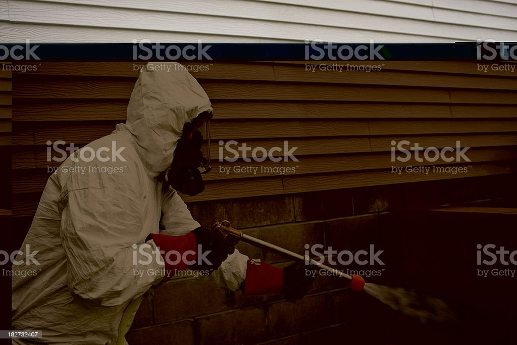 Pest Control Worker Spraying Insecticide near a Home stock photo