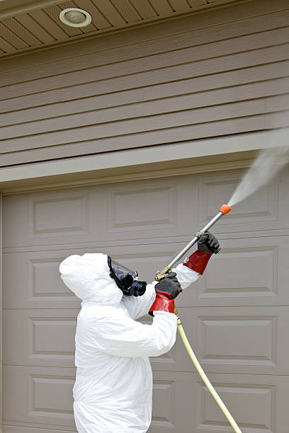 pest control worker spraying insecticide on a home's garage - white suit stock photos and pictures