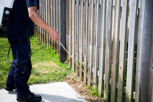 Pest Control Worker Spraying Pesticide Pest Control Worker Spraying Pesticide outside the house pest stock pictures, royalty-free photos & images