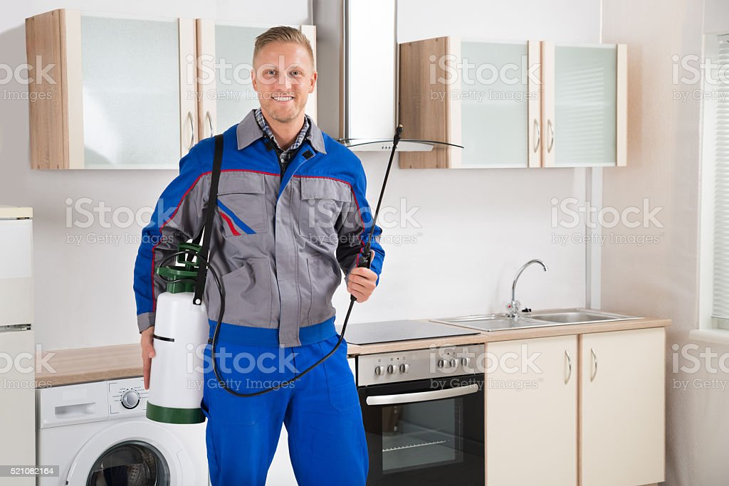 Pest Control Worker With Insecticide Sprayer stock photo