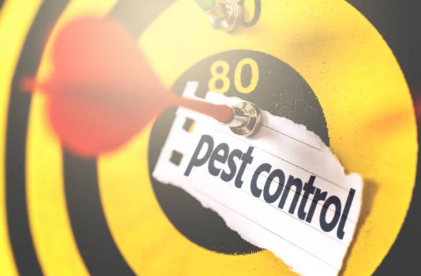 Pest Control written on Arrow in the bullseye stock photo